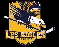 logo-team-hockey